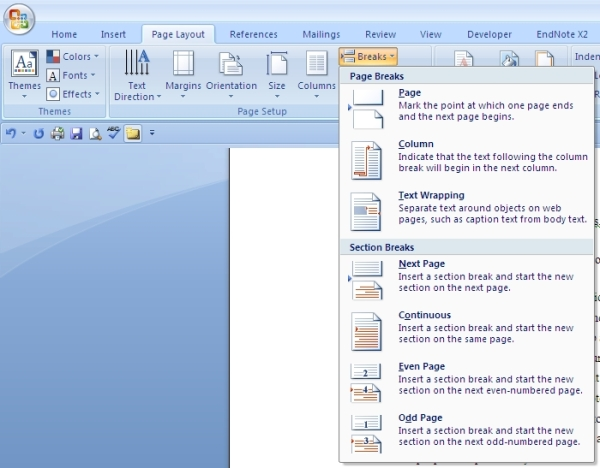 Page Layout menu shown with Breaks submenu and Section Break option